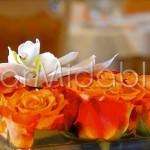 Centrotavola con rose arancio e orchidee bianche