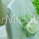Addobbo sedute degli sposi con dettagli floreali