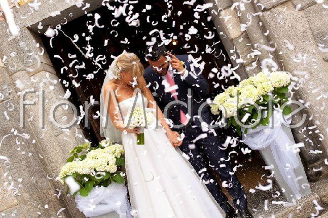 Fiori verdi per addobbi floreali matrimonio e bouquet for Ortensie bianche