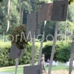Tableau mariage sospeso con camomille e esrbe aromatiche
