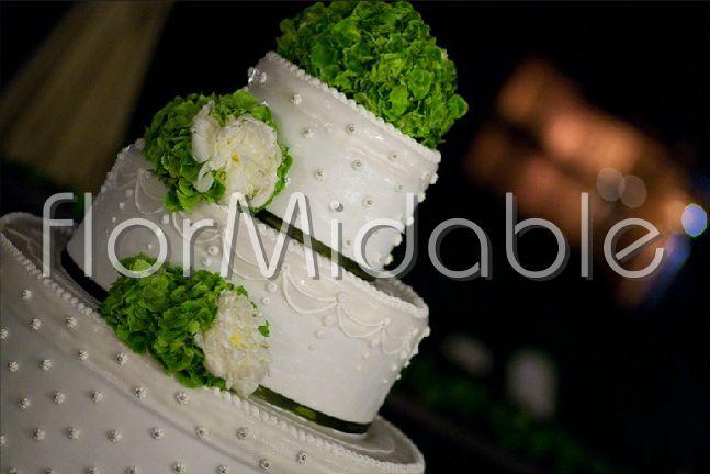 Ortensie Matrimonio Costo : Ortensie rampicanti bianche idee per il design della casa